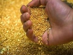 Giá vàng châu Á vượt ngưỡng 1.800 USD trước khi Fed kết thúc họp