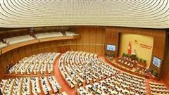 Quốc hội giao Chính phủ nghiên cứu thực hiện miễn, giảm thuế cho doanh nghiệp
