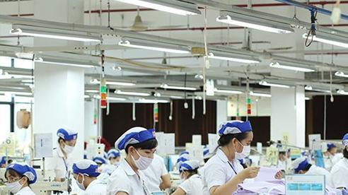 Xuất khẩu dệt may hồi phục đà tăng trưởng