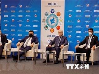 Bộ trưởng Quốc phòng SCO trao đổi về các thách thức an ninh khu vực