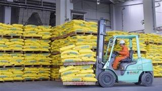 PVFCCo tăng trưởng về hóa chất và NPK Phú Mỹ
