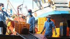 Nỗ lực hỗ trợ ngư dân bám biển