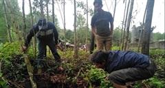 Xác định nguyên nhân hàng loạt hố sụt lún bất thường tại Phong Xuân