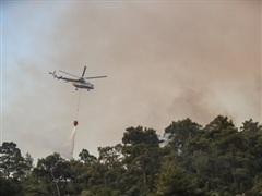 Tổng thống Putin: Nga hỗ trợ Thổ Nhĩ Kỳ dập tắt cháy rừng