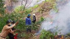 Phát hiện một thi thể trong vụ cháy đồi keo Hà Tĩnh