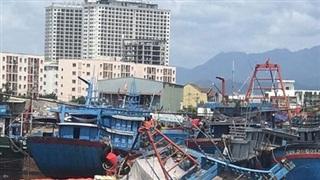 Ứng phó khẩn cấp sự cố tàu cá chìm tràn dầu trên biển