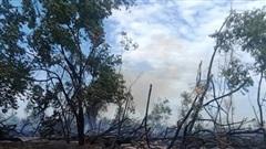Quảng Nam: Một người tử vong trong đám cháy rừng keo