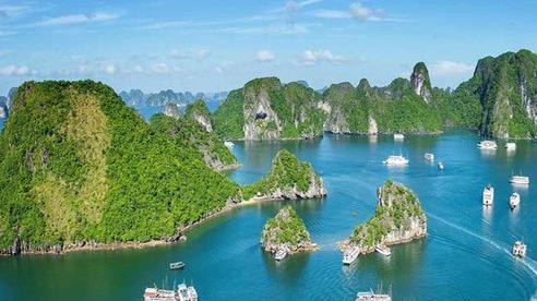 Đặc sản 'chân dài' ở Quảng Ninh, giá bạc triệu nhưng có tiền chưa chắc đã mua được