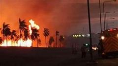 Cháy rừng, sân bay lớn nhất Bolivia phải đóng cửa