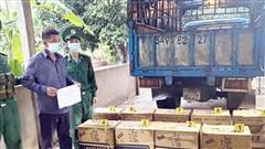 Đấu tranh, ngăn chặn triệt để hoạt động buôn lậu qua biên giới Bình Phước