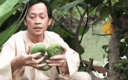 Nghệ sĩ Hoài Linh khoe vườn nhà mình có 1 loại cây quý mọc trái đột biến, dân mạng khẳng định: Cây này tiền tỷ cũng không bán!