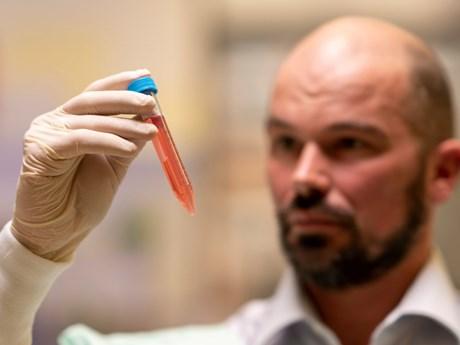 Các nhà khoa học Australia phát triển hydrogel điều trị bệnh Parkinson