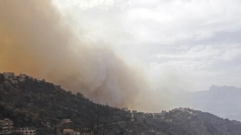 Cháy rừng bùng phát ở Algeria gây hậu quả nghiêm trọng