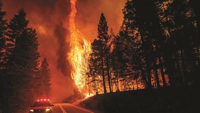Trái đất nóng và sự đe dọa từ những đám cháy