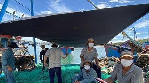 Hàng trăm ngư dân 'kẹt' ở cảng biển Sa Huỳnh và nỗi lo lây nhiễm