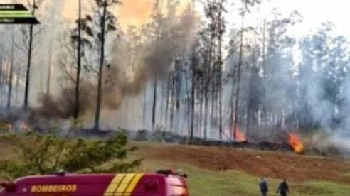 Rơi máy bay ở Brazil, 7 người chết