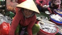 Thừa Thiên Huế triển khai hỗ trợ lao động tự do gặp khó khăn do COVID-19
