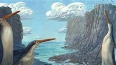Phát hiện chim cánh cụt khổng lồ cao bằng con người