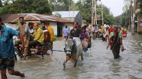 Thế giới đối mặt cuộc khủng hoảng nhân đạo chưa từng có