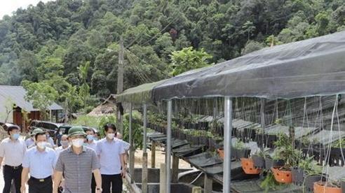 Huyện Lang Chánh (Thanh Hoá): Phát triển kinh tế gắn với An sinh xã hội