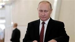 Bầu Hạ viện Nga: 260.000 người bỏ phiếu sớm, Tổng thống Putin thực hiện trực tuyến vì lý do đặc biệt
