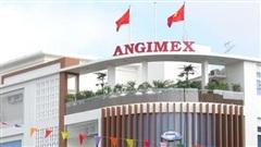 Angimex (AGM) bị HoSE nhắc nhở về việc tạm hoãn trả cổ tức 2020