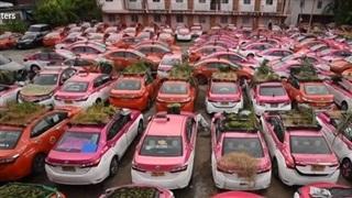 Hàng trăm xe taxi 'biến thành' vườn rau mini ở Thái Lan