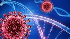 Những biến thể của virus SARS-CoV-2: Nguy cơ về những làn sóng lây nhiễm mới