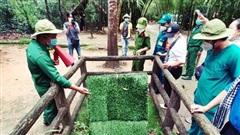 Thành phố Hồ Chí Minh ban hành Bộ tiêu chí ''du lịch an toàn''