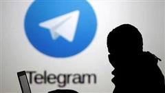 Telegram trở thành 'mảnh đất màu mỡ' cho tội phạm mạng
