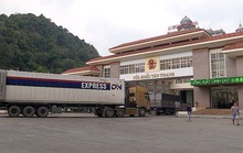 Thủ tướng yêu cầu thúc đẩy xuất khẩu nông sản chính ngạch sang Trung Quốc