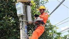 PC Quảng Ngãi: 8 năm thực hiện hiệu quả theo Nghị định 134