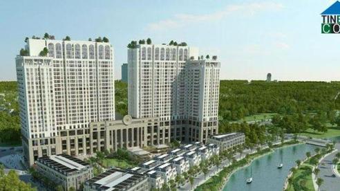 Quyết định thành lập thành phố Từ Sơn, tỉnh Bắc Ninh