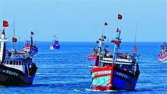 Cho ý kiến về quy định cho thuê khu vực biển để nuôi trồng thủy sản