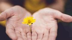 Cách thực hành chánh niệm giúp giảm stress hàng ngày