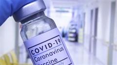 Chuyên gia nhận định Covid-19 dần sẽ giống cảm lạnh