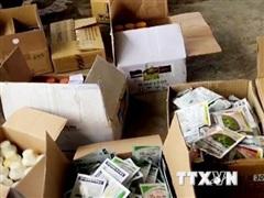 Thu giữ hơn 7.700 sản phẩm thuốc bảo vệ thực vật không rõ nguồn gốc