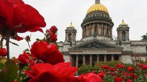 Nga tổ chức đám cưới Hoàng gia đầu tiên sau hơn một thế kỷ