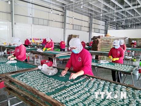 Bến Tre chi hơn 266 tỷ đồng hỗ trợ DN, người lao động gặp khó khăn