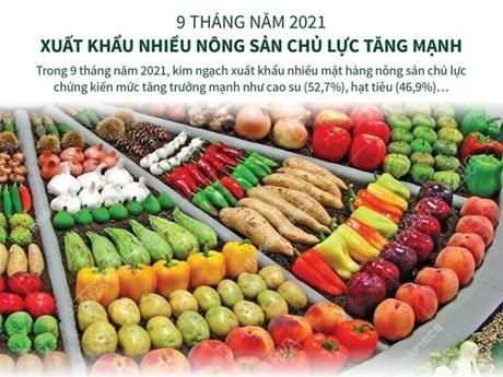 [Infographics] Kim ngạch xuất khẩu nhiều nông sản chủ lực tăng mạnh