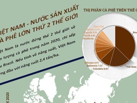 [Infographics] Việt Nam là nước sản xuất càphê lớn thứ hai thế giới