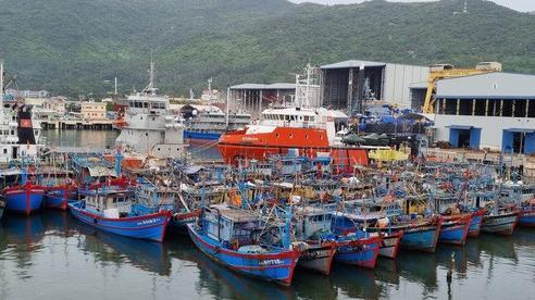 Đà Nẵng cấm tàu thuyền ra khơi