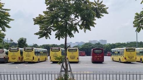 Vận tải hành khách chưa thông, doanh nghiệp 'chết lâm sàng'