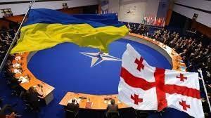 Trả lời về khả năng Ukraine và Gruzia gia nhập NATO