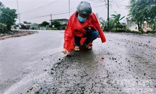 Gia Lai: Đường mới thảm nhựa đã 'vá' chằng chịt