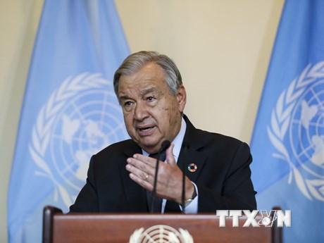 LHQ kêu gọi thế giới đồng thuận ngăn chặn khủng hoảng hệ sinh thái