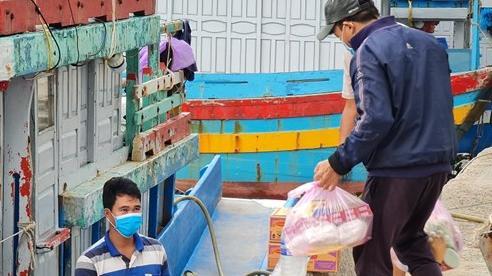 Quảng Ngãi: Mở cửa tất cả cảng cá, ngư dân nô nức chuẩn bị vươn khơi