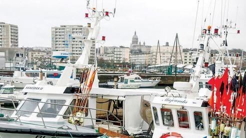 Tranh cãi đánh bắt cá hậu Brexit: EU dọa trả đũa Anh