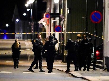 Na Uy bắt giữ nghi phạm sát hại nhiều người ở thị trấn Kongsberg