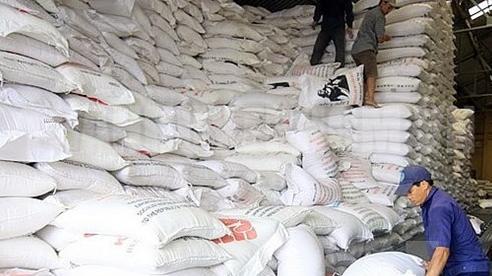 Xuất cấp hàng trăm nghìn tấn gạo trong 9 tháng